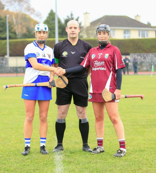 Leinster Council Of The Camogie Association