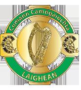 Cumann Comhairle Laighean